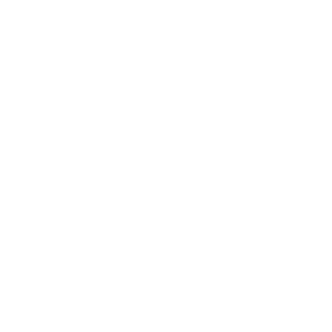 TheLight